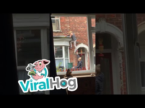Brian Fink - VIDEO: Lost Key Leads To Human Ladder FAIL