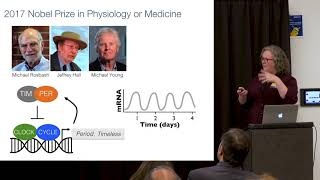 Kraw Lecture Series: Circadian Rhythms – When Our Biological Clocks Go Bad