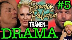 Promis unter Palmen: SKANDAL von Carina, Yotta & Matthias! Désirée Nick is back! Folge 5