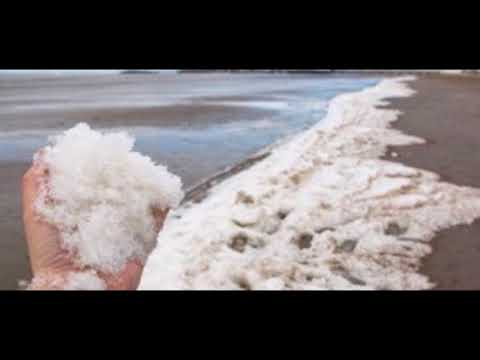 Sea FREEZES OVER Britain is so COLD the sea has FROZEN