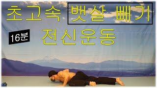 초고속 뱃살 빼기 전신운동/ 단기간에 복부지방 제거하는…