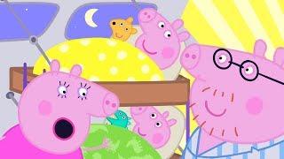 Peppa Pig en Español Episodios completos ⭐️ Día de campamento ⭐️ Pepa la cerdita