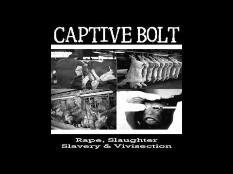 Captive Bolt - Cats and Dogs
