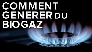HomeBiogaz : ce digesteur transforme les restes organiques en biogaz