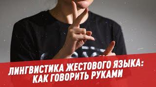 Лингвистика жестового языка: как говорить руками - Лингвистика