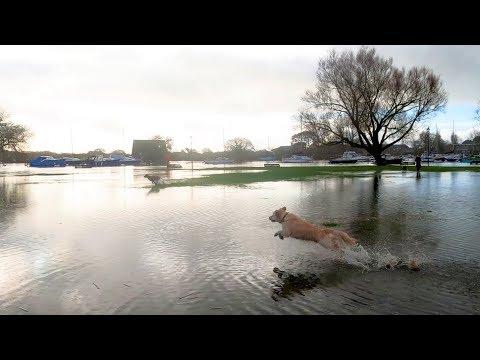 Christchurch, Dorset UK: Autumn High Tide (springs) Flooding