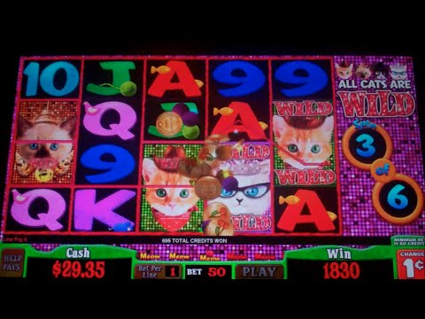 190+free slots-free casino slot machine games