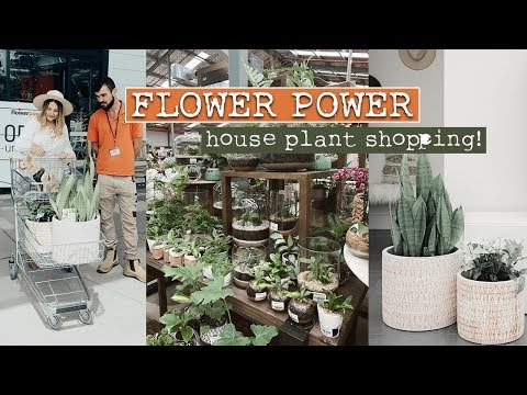 Come House Plant Shopping With Me! | Flower Power Garden Centre Milperra