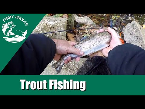 Trout Fishing White Clay Creek Delaware (October 2018)