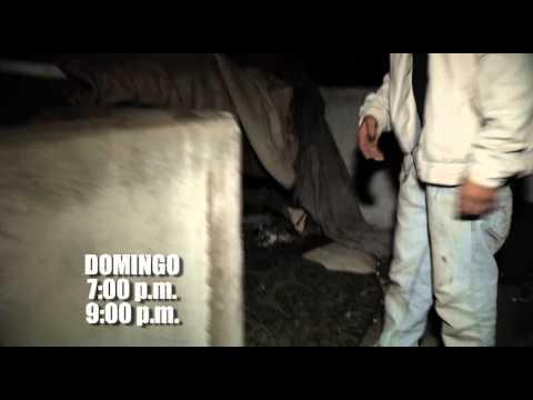 Promo Aliados por la Seguridad  10-02-2013
