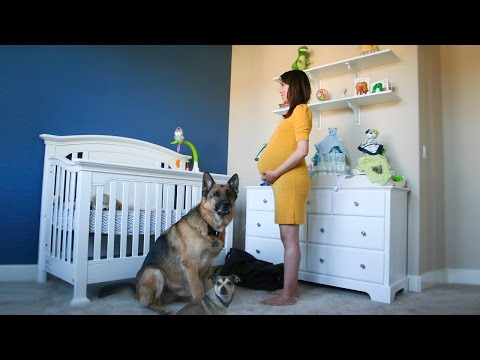 Pregnant to Baby in 90 Seconds Touching Time Lapse