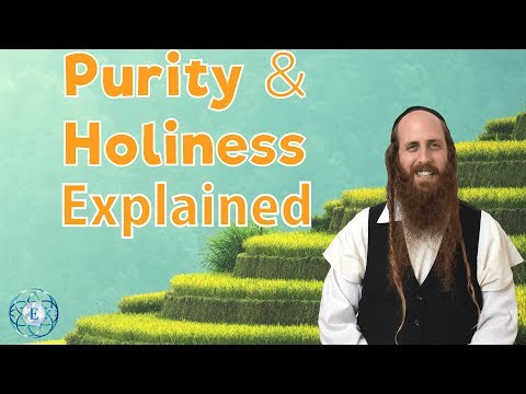 True Purity And Holiness Explained - Rav Dror