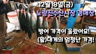 12월18일 노량진수산시장 경매장 방문 / 방어 대게가…