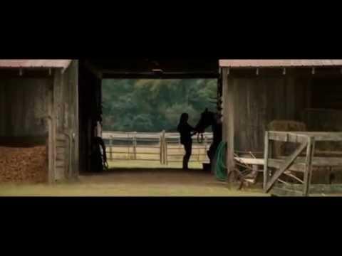Dear John (Soundtrack) Waves, The Barn