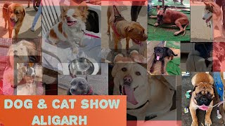 Dog and Cat Show | Aligarh | 2021 | Dog breeds that might be new for you |
