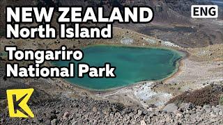 【K】NewZealand Travel-North Island[뉴질랜드 여행-북섬]통가리로 국립공원/Tongariro National Park/Lord of the rings