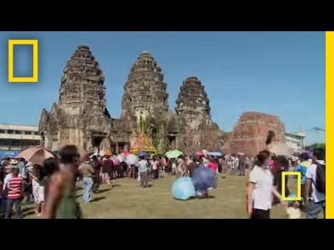 Lopburi Monkey Festival | National Geographic