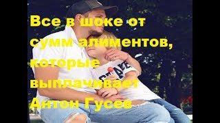 Все в шоке от сумм алиментов, которые выплачивает Антон Гусев. ДОМ-2, Новости, ТНТ