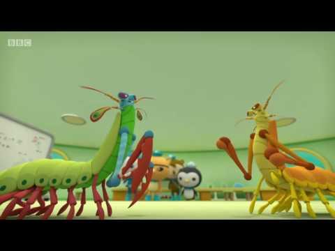 Octonauts S04E06 The Mantis Shrimp