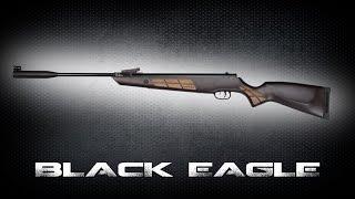 Norica Black Eagle