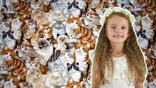 ПростоЕва #38 - много кошек (+100500 для детей)