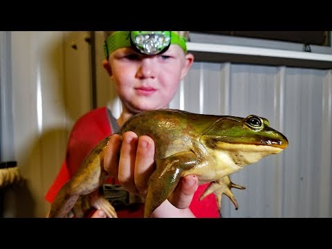 Catch and Cook FROGS, CRAW FISH & CATFISH!!!!