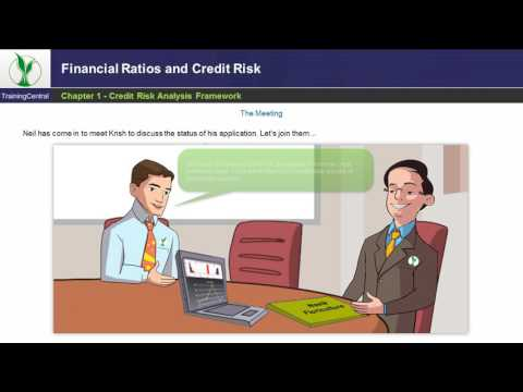 Financial Ratios and Credit Risk