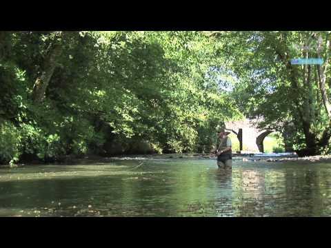 The Arundell Arms, Lifton, Devon