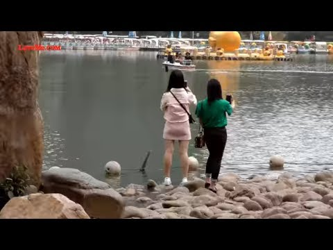 See The Sights of Shenzhen China in 4K