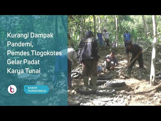 Kurangi Dampak Pandemi, Pemdes Tlogokotes Gelar Padat Karya Tunai