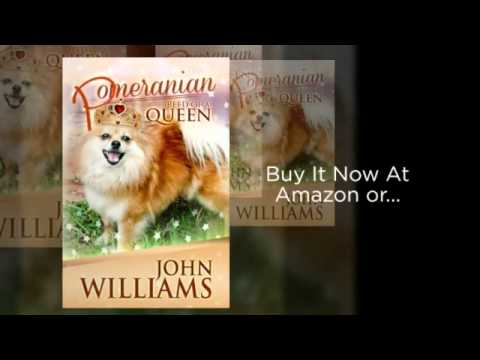 pomeranian-breed-of-a-queen-pomeranian-book-|-pomeranian-dog-|-pomeranian-puppies