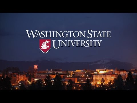 Experience Washington State University