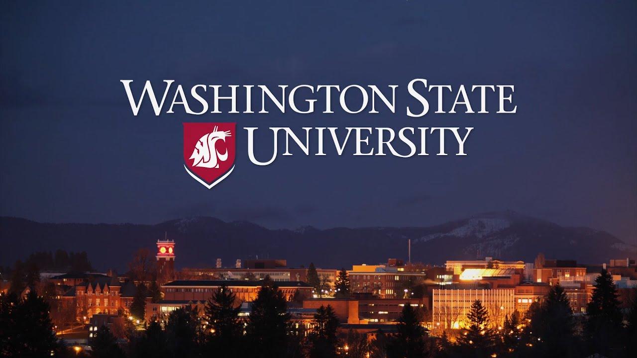 Image result for Washington State University