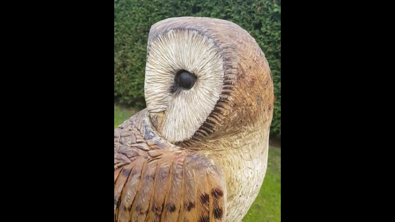 Chainsaw carved barn owl garden art by shaun gilbert youtube