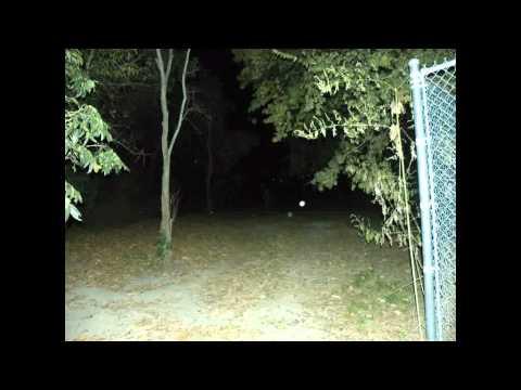 Cullen Park: Volume 1