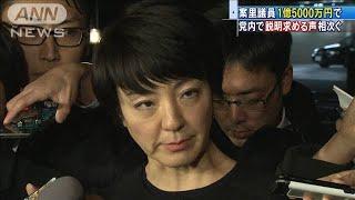 党内からも「破格・不公平」・・・河井案里議員1.5億円(20/01/28)