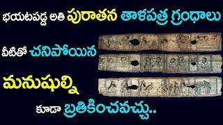 బయటపడ్డ తాళపత్రాలు చనిపోయిన మనిషిని బ్రతికించడం ఎలా? | Secrets Behind Talapatra Grandhalu | SumanTv
