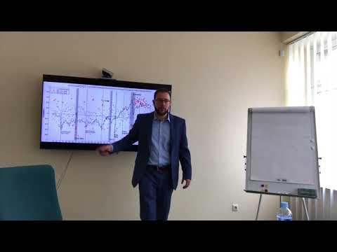 Supply and Demand Shocks in the Oil Market   PhD Thesis Presentation at the Bank of Lithuania