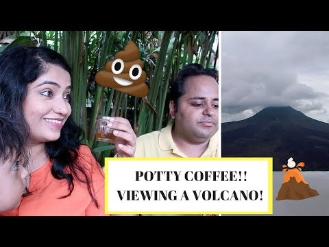 Bali Volcano , Potty Coffee and Drinking 12 Cups of Teas | Celebrating our 5th Anniversary in Bali
