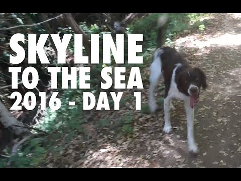 Skyline to the Sea - Big Basin Redwoods, July 6th, 2016 - Day 1