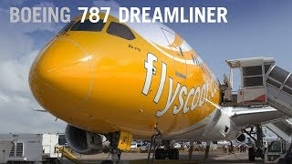 How Scoot's Boeing 787 Exemplifies the Dreamliner's Cabin Flexibility – AINtv