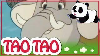 Tao Tao - 49 - עכבר דד