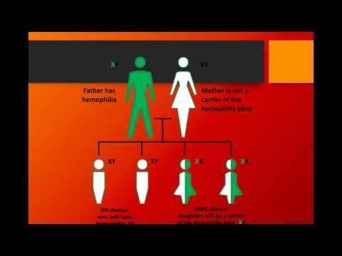Haemophilia - Harry Newman