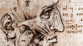 Leonardo: Anatomist - by Nature Video