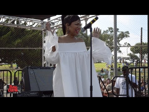 MICHEL'LE Performs NO MORE LIES At the Taste of Inglewood