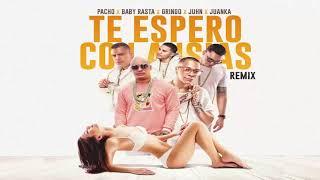 Download Video Te Espero Con Ansias Remix - Pacho El Antifeka ft Baby Rasta y Gringo, Juhn y Juanka El Problematik MP3 3GP MP4
