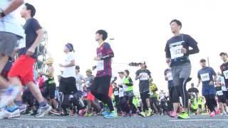 尼崎市市制100周年を記念して行われた、「あまがすきハーフマラソン...