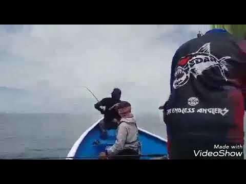 New record SRI GANDA SABAH 127cm n over 30kg Giant Travelly on casting heavy cover settup..