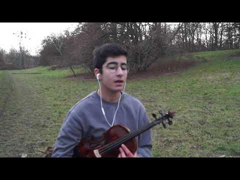 Ali Insan - Ay Le Gule