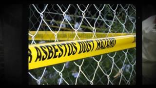 Asbestos Abatement Mold Removal Atlanta